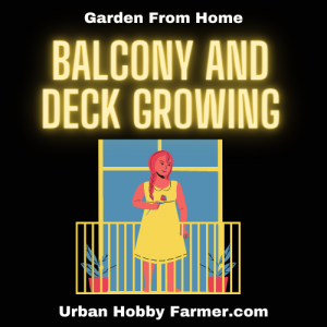 Balcony and Deck Gardens
