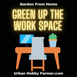 Green Up Your Work Space